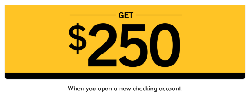 New york community bank checking promotion 250 bonus az fl nj new york community bank 250 checking bonus publicscrutiny Image collections