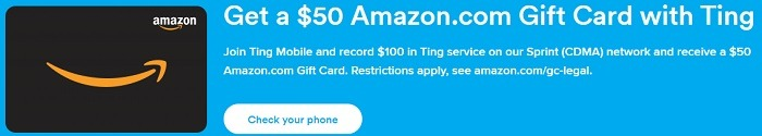 Ting Amazon GC Promotion