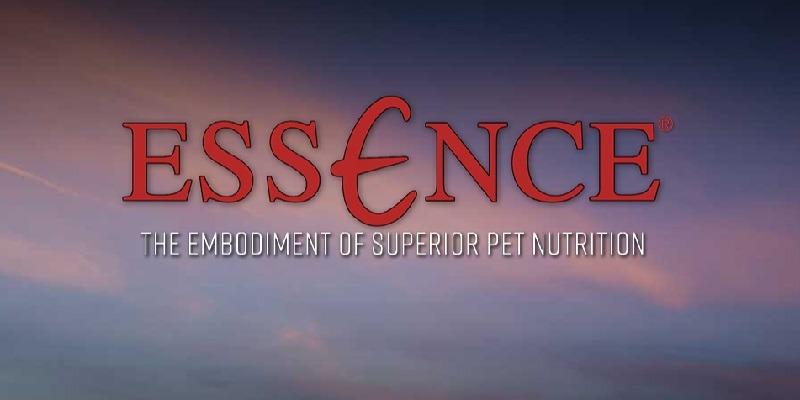 Essence Promotions