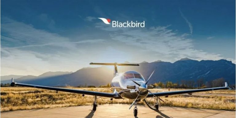 Blackbird Intro Photo