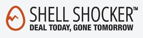 Newegg Shell Shocker