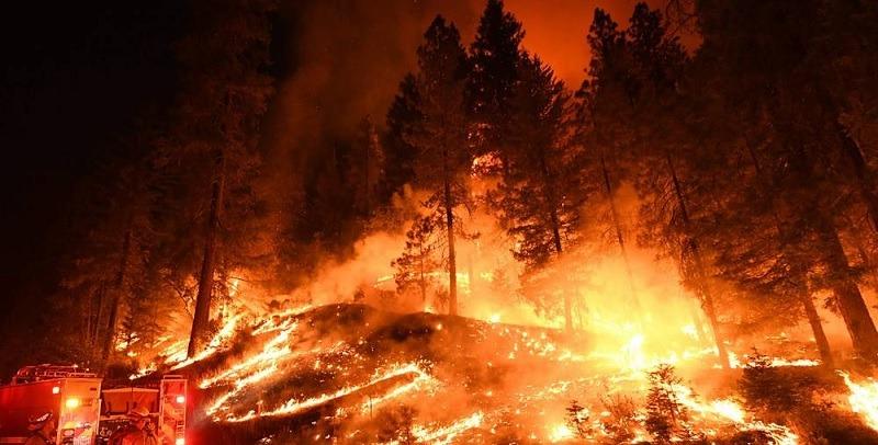 California Fire Victim Trust Claims Portal Class Action Lawsuit